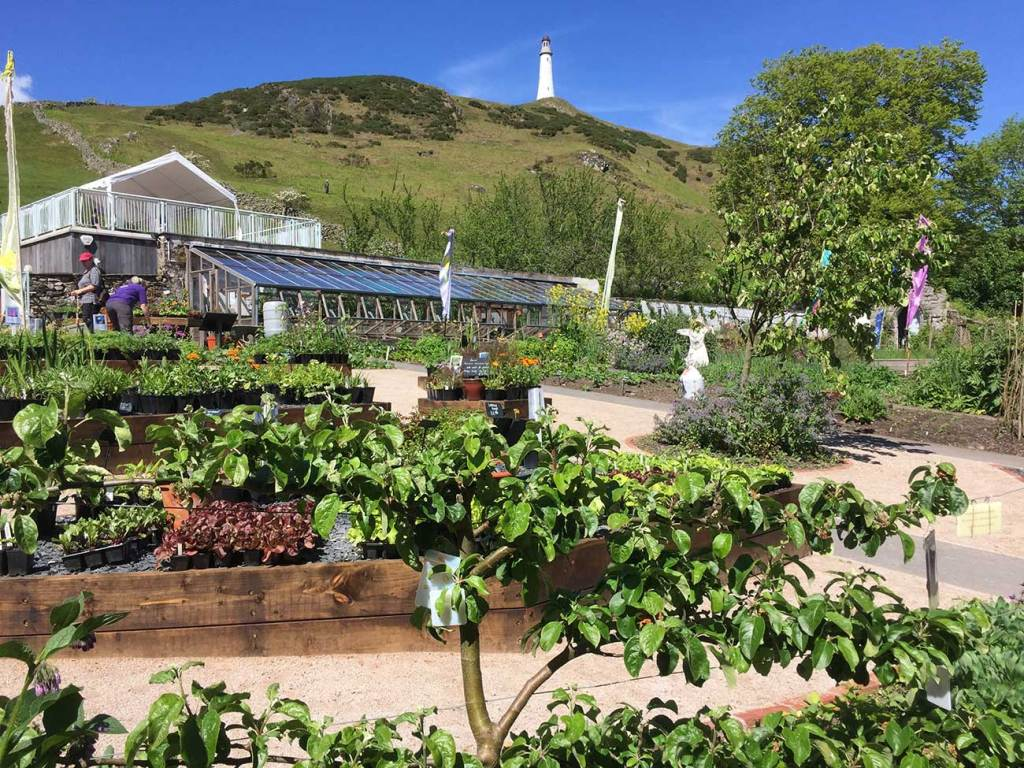 Ford Park plant nursery and garden sales