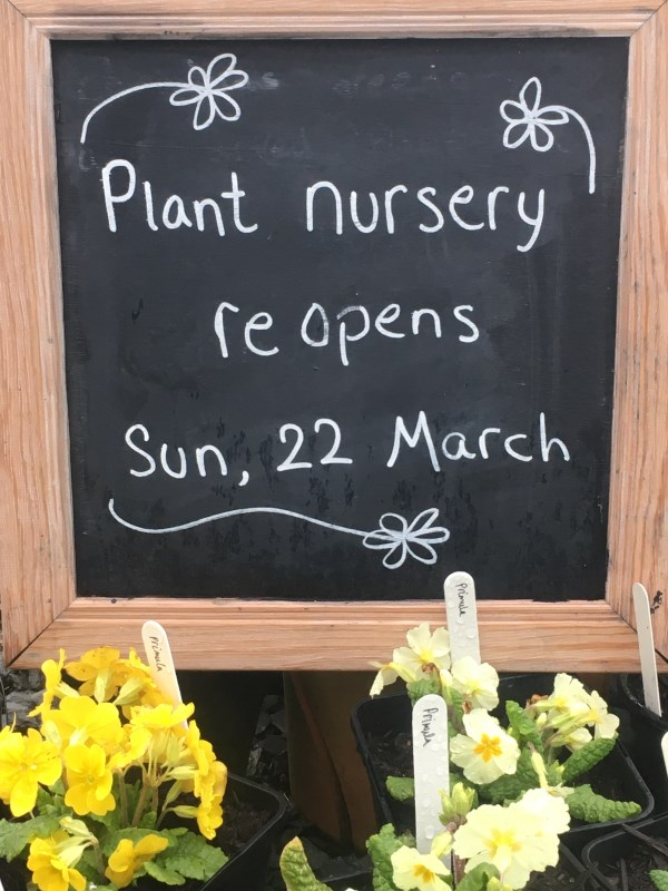 Plant Nursery set to re-open on Sunday (March 22)