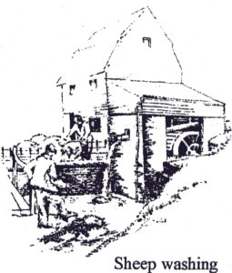 Ford End Watermill : A guide for Teachers and Schools