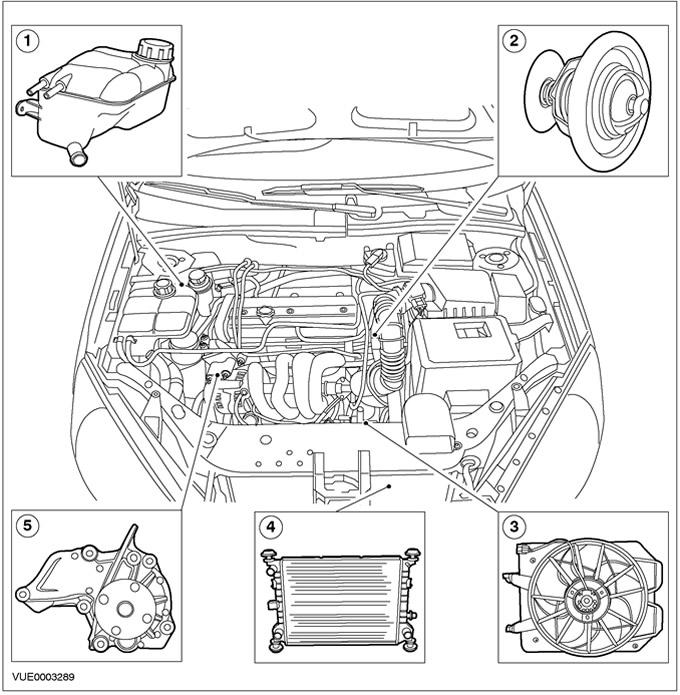 Описание и принцип действия охлаждения двигателя Ford Focus 1