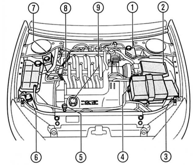 Устройство и характеристики двигателей Ford Mondeo 3