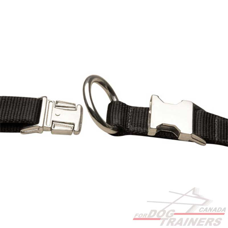 All Weather Dog Collar Made Of Nylon Order Multifunctional