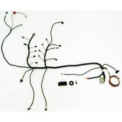 MUSTANG BOSS 302 ALTERNATOR KIT| Part Details for M-8600