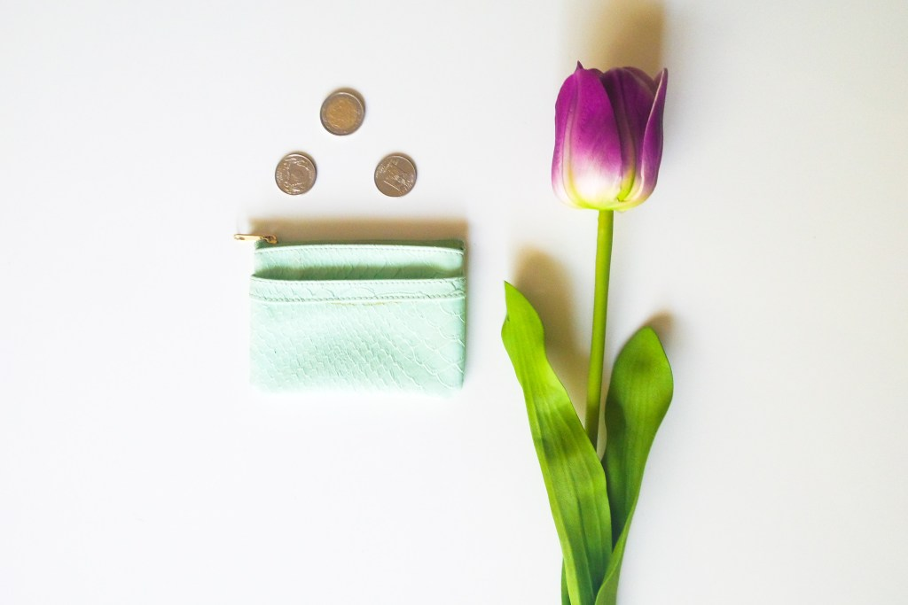 Soft Coin purse for foreign currency