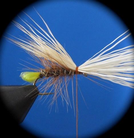 Fliegenbinden Elk Hair Caddis6