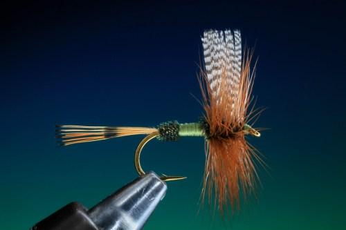 Traditionelle Trockenfliege17