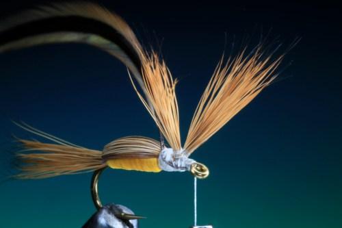 Forelle Äsche Fliegenbinden Barry Ord Clarke Humpy18