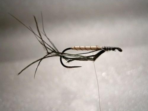 Forelle Äsche Fliegenbinden Schnake Crane Fly Daddy Long Legs3