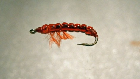 Blog Fliegenbinden Bloodworm6