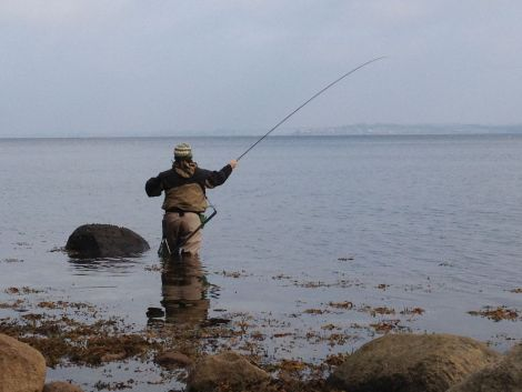 Fliegenfischen Meerforelle Flensburger Förde