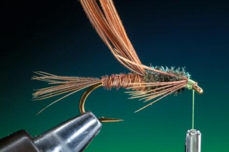 BOC PTN Pheasant Tail 17