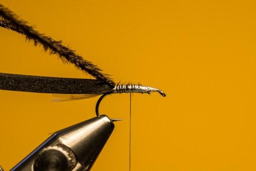 Sven Ostermann Beetle FdM-1720