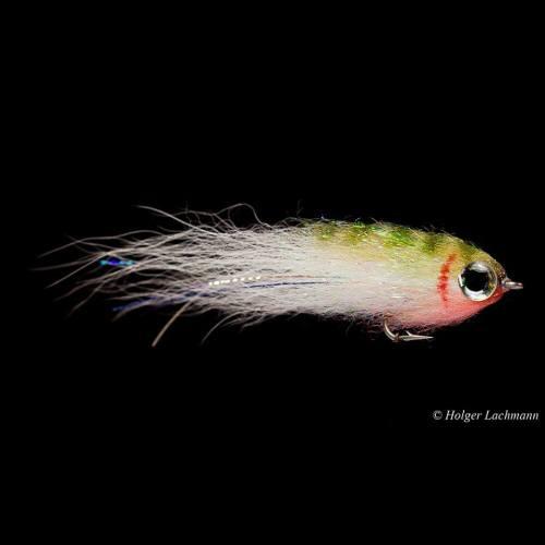 Fliegenfischen_Rapfen_Aspinator5