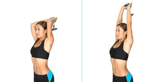 Image result for Tricep Extensions