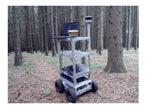 forest robots