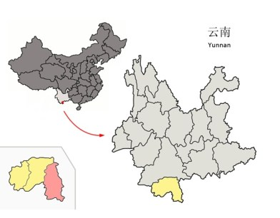 Yunnan Province with China, Xishuangbanna District in yellow within Yunnan Province and Mengla county in pink within Xishuangbanna in the insect. Image credit: Sun Joseph Chang