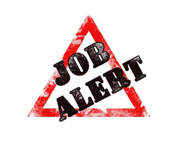 job alert