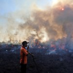 Wypalanie lasu na 100-lecie Finlandii.