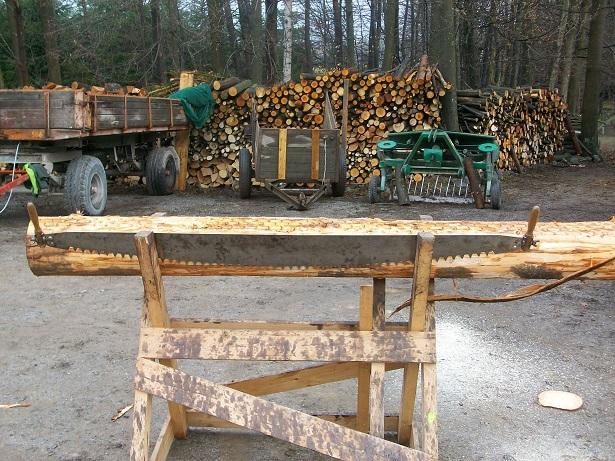 forest attrition deforestation saw