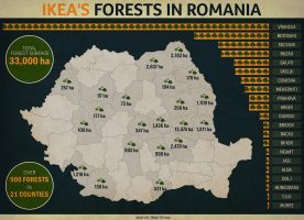 Rumuńskie pierwotne lasy bukowe