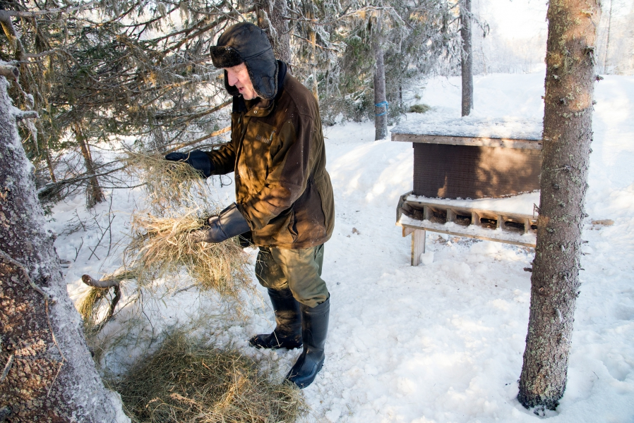 Opiekun łowiska