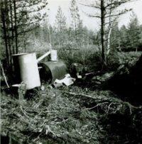 Skogvaktare