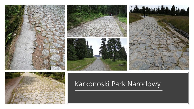 Betonoza i żelazoza w polskich parkach narodowych
