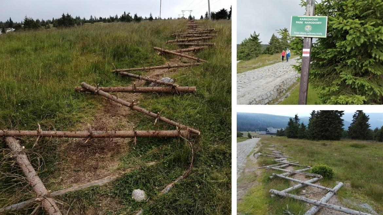 Potykacze i zasieki w polskich parkach narodowych