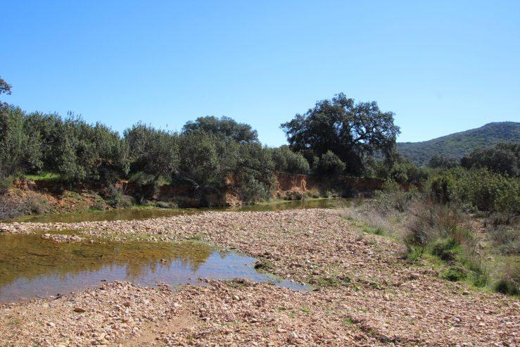 Reservas Naturales Fluviales
