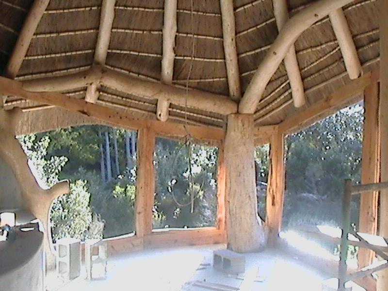 Barett House  Forest Creations