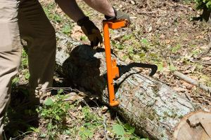 LogOX_smart_Log_Holder_lifter_with_Cant_Hook