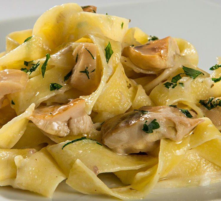 Tagliatelle ai funghi porcini, cucina tipica emiliana pasta fatta a mano