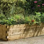 Caledonian Trough Raised Bed Forest Garden