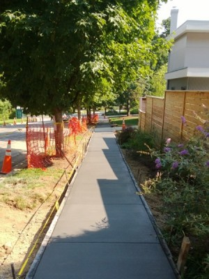 Freshly poured sidewalk on 29th Street last July. (photo by Alex Ray)