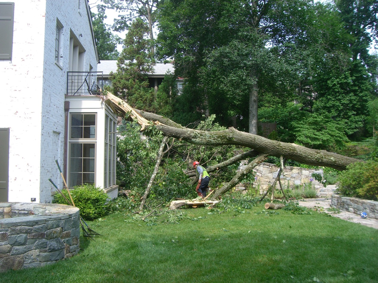 A red oak hit the house after a 2007 spring storm.