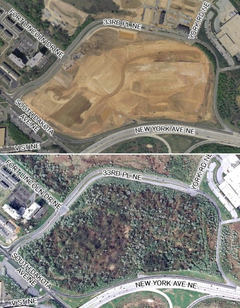 Not a tree was left (top photo, in June 2012) of canopy covering 40 acres (bottom, April 2010). UFA says trees removed were invasive and undesirable species which grew after previous clear cuttings. (photo courtesy of Casey Trees)