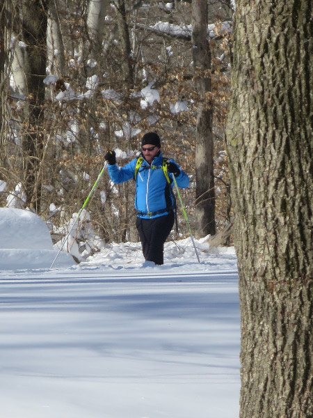 Cross-country skier on West Ridge Trail