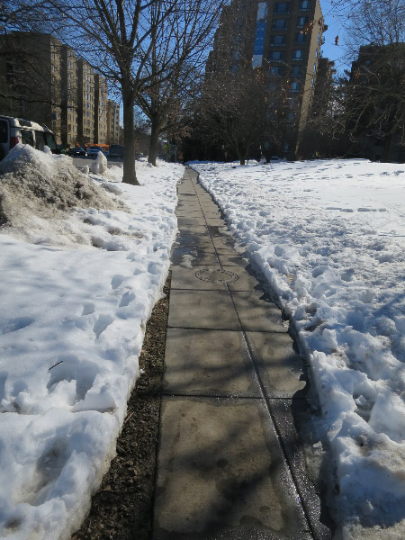The Connecticut Avenue sidewalk was shoveled at Muhlenberg Park.