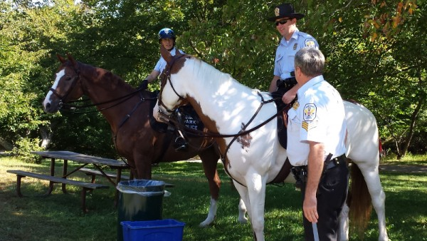 Park service horses and their people keep an eye on the proceedings.