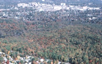 Aerial photo of Rock Creek Park, with nearby streets and private homes. (National Park Service photo)