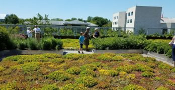 Sign up for a weekend tour of UDC's rooftop farm