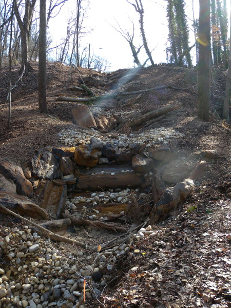 DDOE says the Linnean Gully project is similar to this one, at the Anacostia's Pope Branch tributary. Here you see the results as of winter 2012, before the vegetation grew back in around it. (photo courtesy of Steve Saari, DDOE)