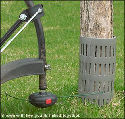 trunk guard and trimmer