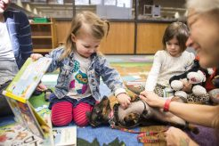 Zara Harrington, 2, of Forest Park, pets Deke, a therapy dog from PAWSitive Therapy Troupe on Monday, Feb. 18 during Read with a Dog Storytime in the Austin Room at the public library. | Alex Rogals/Staff Photographer