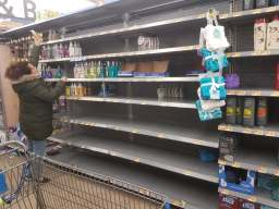 Hand sanitizer was sold out and hand soap was in short supply at at Walmart, 1300 Desplaines Ave., on March 12.