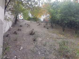 Clean-up on Oct. 13 resulted in a clear area. | Maria Maxham