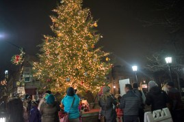 Shoppers stop to look at the Christmas tree on Madison Street. | Stacey Rupolo/Contributor
