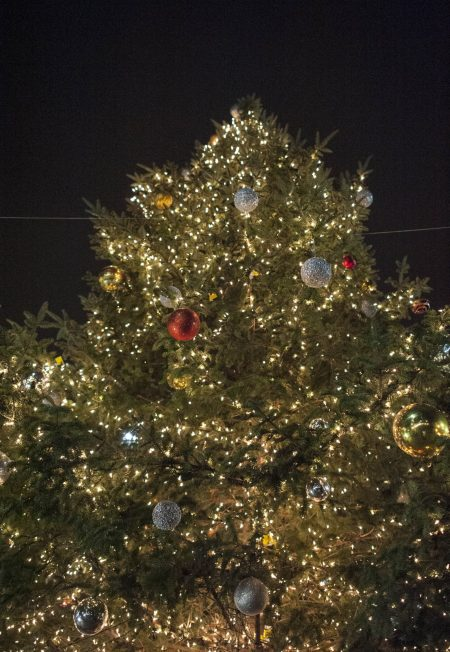 The Christmas tree in downtown Forest Park. | William Camargo/Staff Photographer