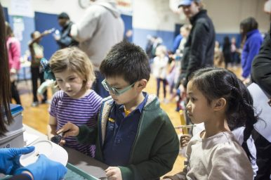 Connor Ng learns how to wipe prints during an activity at the Science in the Neighborhood event on Friday, Feb. 10. | William Camargo/Staff Photographer