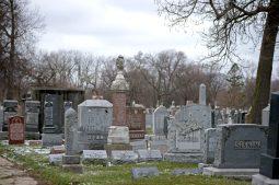 Jewish Waldheim Cemetery | Alexa Rogals/Staff Photographer